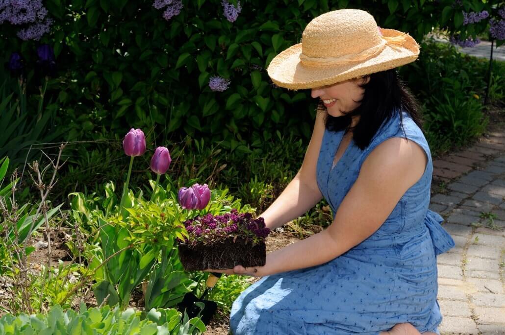 Ihren Garten Genießen ohne Sorgen vor infizierenden Zecken