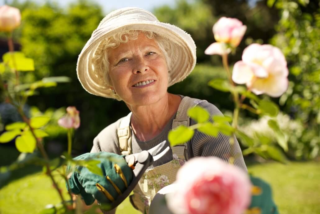 Pflanzenwahl wichtig für Zeckenbekämpfung
