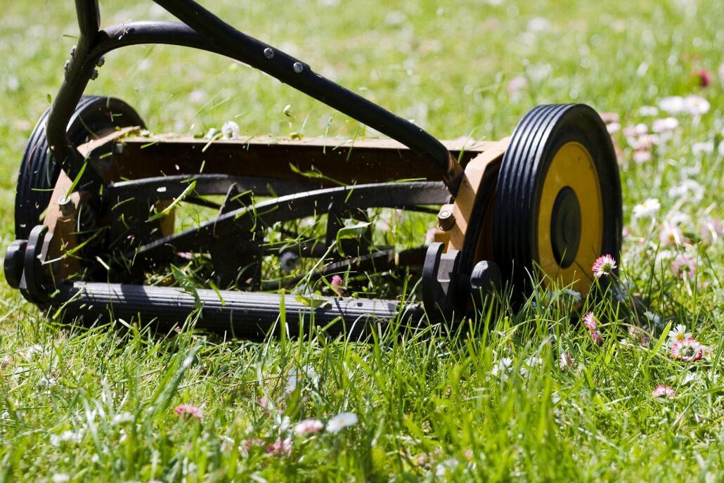 Rasen mähen im Garten